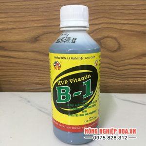Phân bón Vitamin B1 dùng cho lan và cây ảnh T90