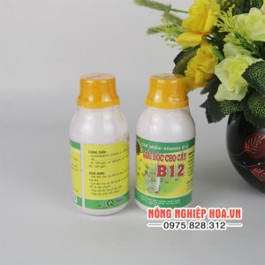 Dung dịch B12 giải độc cho lan và cây cảnh T134