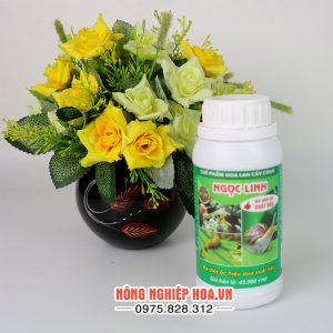 Thuốc diệt ốc sên cho lan Ngọc Linh T138