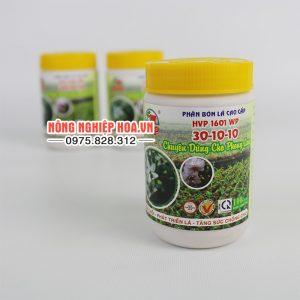 Phân bón HVP 1601WP 30-10-10 chuyên dùng cho lan – T82