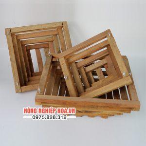 Chậu gỗ trồng lan vuông, đáy vát – 3 chiếc/cặp CG5