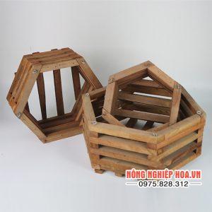 Chậu gỗ trồng lan lục giác, 3 chiếc/cặp CG6