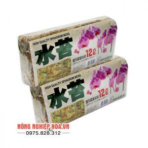 Rêu chi lê trồng lan 130g/gói GT30