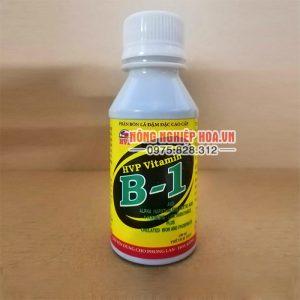 Phân bón Vitamin B1 HVP cho lan lọ 100ml – T30